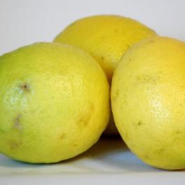 BIO citron 1 ks - z dovozu