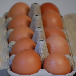 vejce z volného chovu 10 ks